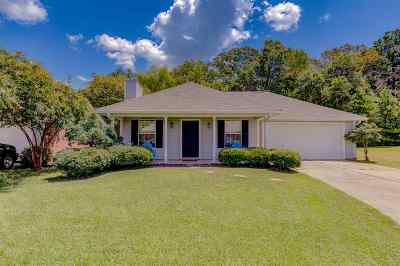 Brandon Single Family Home Contingent/Pending: 324 Swan Dr