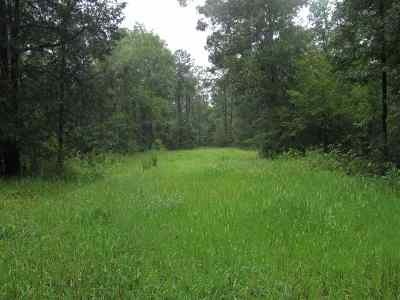 Hinds County Residential Lots & Land For Sale: Paul Gallows Rd