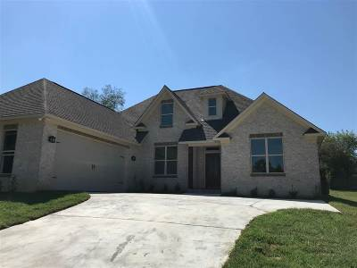 Brandon Single Family Home For Sale: 704 Castlewoods Blvd
