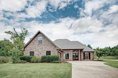 Brandon Single Family Home Contingent/Pending: 2009 Pebble Creek Dr
