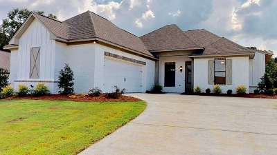 Flowood Single Family Home For Sale: 164 Grace Dr