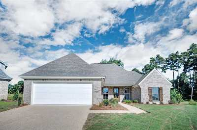 Rankin County Single Family Home For Sale: 353 Emerald Way