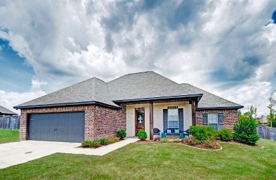 Brandon Single Family Home Contingent/Pending: 407 Winterfield Way
