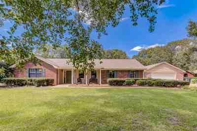 Clinton Single Family Home For Sale: 108 Pinehaven Pl