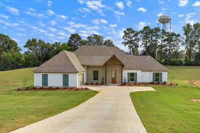 Florence, Richland Single Family Home For Sale: 308 Driftwood Ln