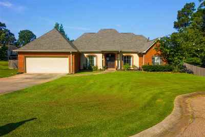Rankin County Single Family Home For Sale: 101 Rustic Way