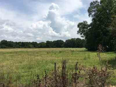 Hinds County Residential Lots & Land For Sale: Flowers Rd