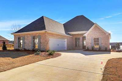 Madison MS Single Family Home For Sale: $384,900