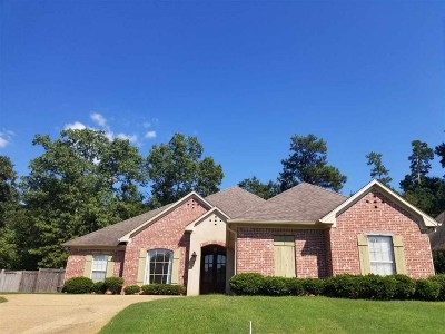 Rankin County Single Family Home For Sale: 572 Turtle Ln