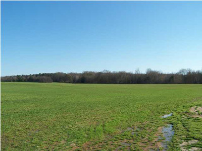 Residential Lots & Land For Sale: 1 Hwy 22