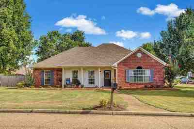 Brandon Single Family Home For Sale: 200 Pecan Cir