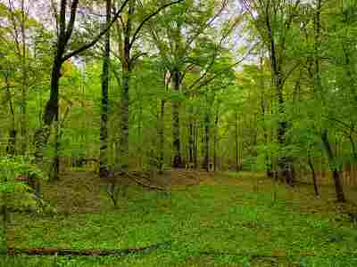 Hinds County Residential Lots & Land For Sale: Joe Coker Rd