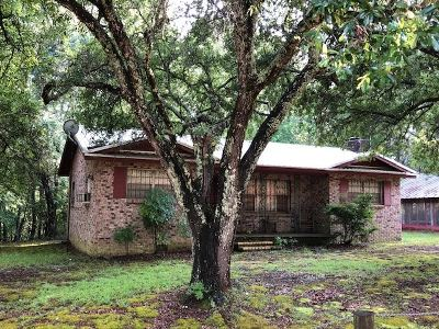 Smith County Single Family Home For Sale: 325 Scr 579