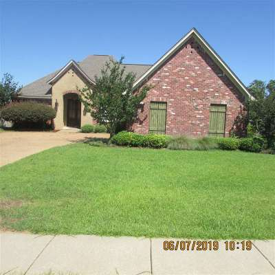 Rankin County Single Family Home For Sale: 209 Turtle Ln