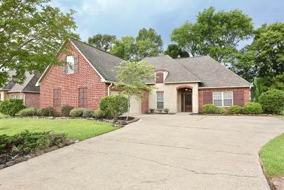 Madison Single Family Home For Sale: 445 Ash Tree Ln