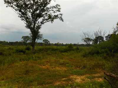 Leake County Residential Lots & Land For Sale: River Bend St
