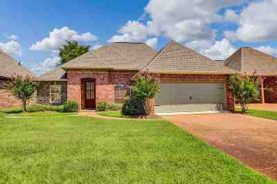 Rankin County Single Family Home For Sale: 115 Amethyst Ln