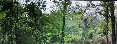 Hinds County Residential Lots & Land For Sale: 375 Mt Salus Dr
