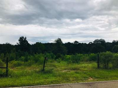 Brandon Residential Lots & Land For Sale: 113 Rankin Rd