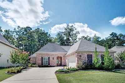Pearl Single Family Home For Sale: 308 N Village Dr