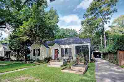 Hinds County Single Family Home For Sale: 1809 Piedmont St