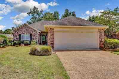 Byram Single Family Home For Sale: 309 Jared Cv