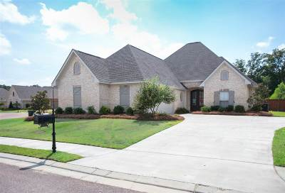 Flowood Single Family Home For Sale: 150 S Grace Dr