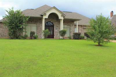 Rankin County Single Family Home For Sale: 501 Grandview Ct
