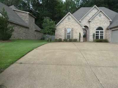 Rankin County Single Family Home For Sale: 443 Julee Cir