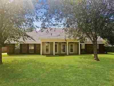 Byram Single Family Home For Sale: 653 Byram Meadows Cv