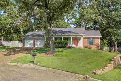 Brandon Single Family Home For Sale: 628 Tenby Ct