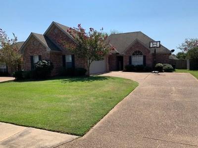 Brandon Single Family Home For Sale: 111 Susan Ln