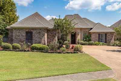 Rankin County Single Family Home For Sale: 221 Oakville Cir