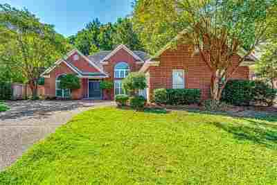 Brandon Single Family Home For Sale: 520 Eastside Cv
