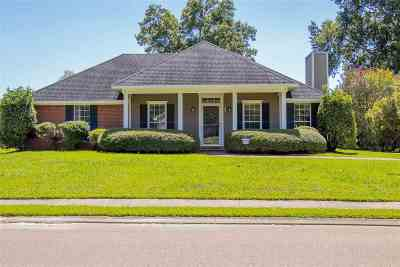 Brandon Single Family Home For Sale: 205 Chestnut Dr