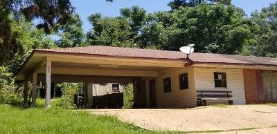 Smith County Single Family Home For Sale: 203 Turner Chapel Rd