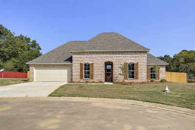 Rankin County Single Family Home For Sale: 134 Wexford Way