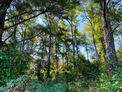 Smith County Residential Lots & Land For Sale: Scr 144