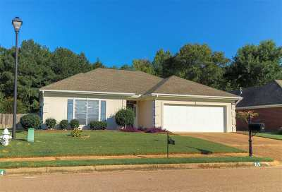 Brandon Single Family Home For Sale: 210 Garden Dr