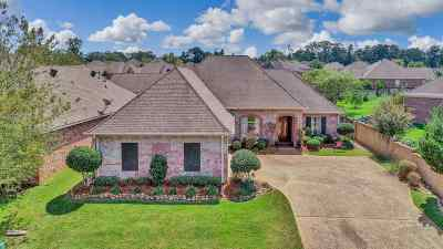 Rankin County Single Family Home For Sale: 404 Providence Dr