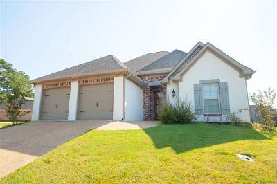 Rankin County Single Family Home For Sale: 155 Provonce Park