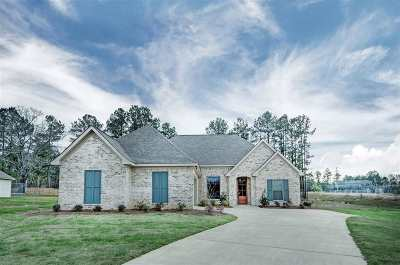 Rankin County Single Family Home For Sale: 263 Ironwood Pl