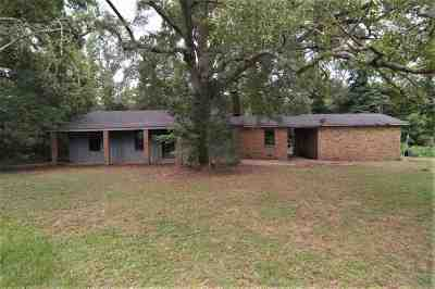 Hinds County Single Family Home For Sale: 1339 Westway Dr