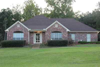 Byram Single Family Home For Sale: 741 Forest Woods Dr