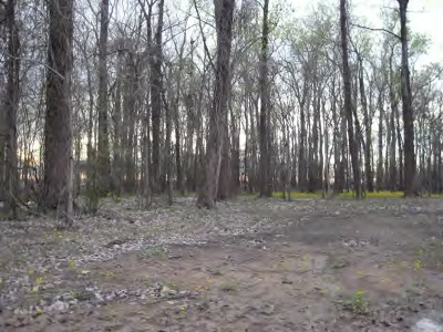 Woodville Residential Lots & Land For Sale: Pecan Grove Road
