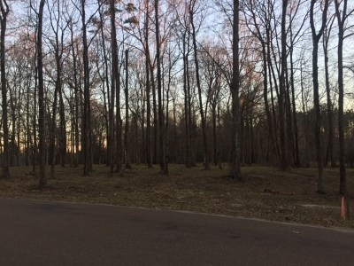 Residential Lots & Land For Sale: Lot 3 Country Squire