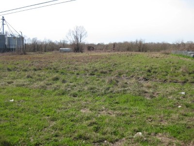Concordia Parish Commercial Lots & Land For Sale: 00 Hwy 84 2 Lots