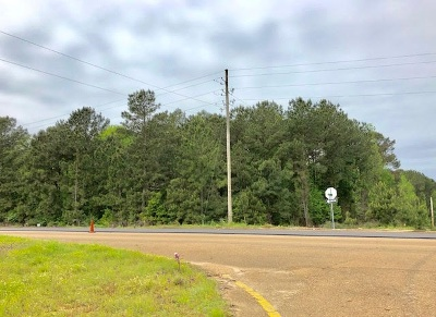 Woodville Commercial Lots & Land For Sale: Hwy 61 South