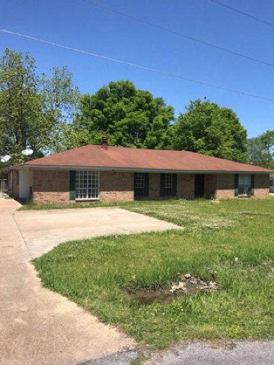 Vidalia Single Family Home For Sale: 287 Terry Circle