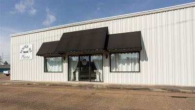 Adams County Commercial For Sale: 151 E Franklin Street